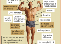 How do steroids work in the human body?